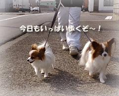 2008-03-02a.jpg