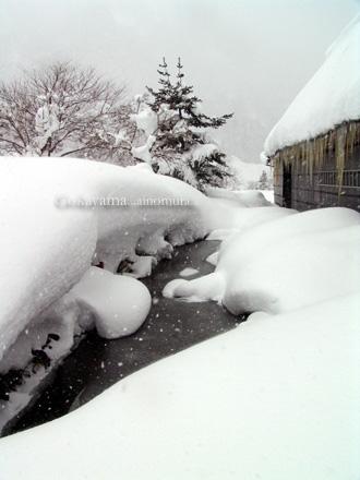 2008-02-17 14;27_DSC09720 -330