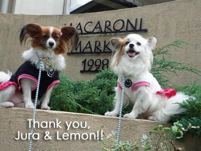 ジュラちゃん&レモンちゃん、ありがとう♪