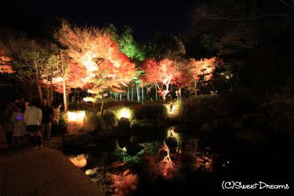 池に映り込む紅葉