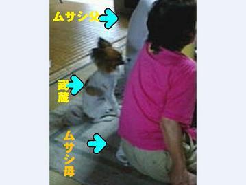 20090716_02.jpg