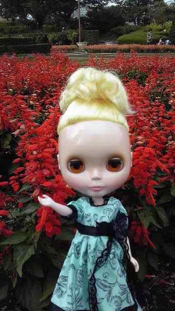 赤い花とブライス