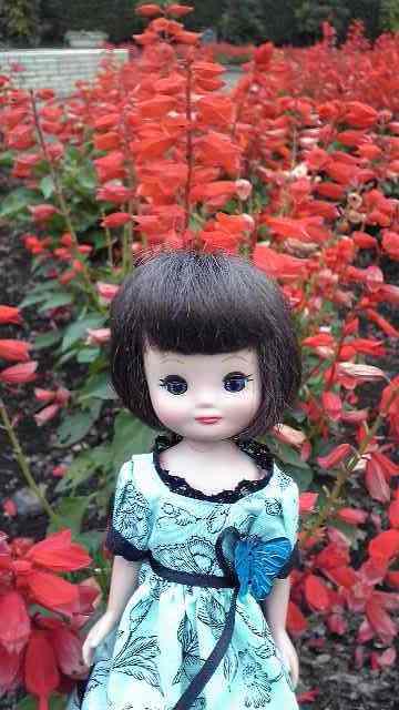赤い花とベチ