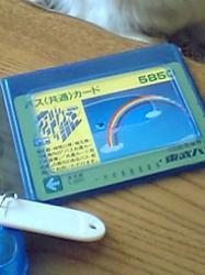 20060503132201.jpg