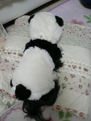 パンダのおしり