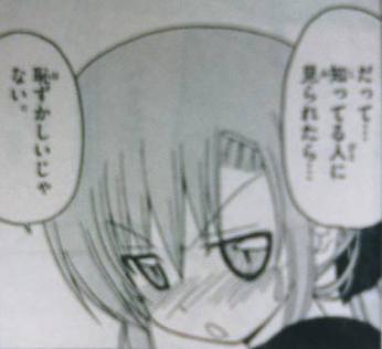 hayate_176_Hinagiku2