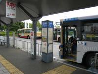桜木町のバス停