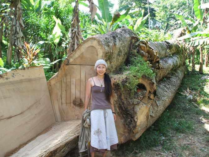 th_300歳の木と