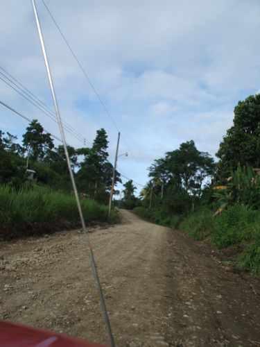 th_ブリブリへの道