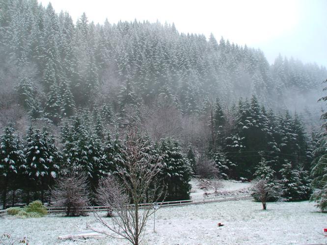 th_初雪1