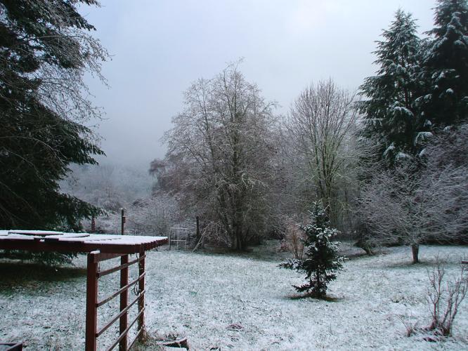 th_初雪2