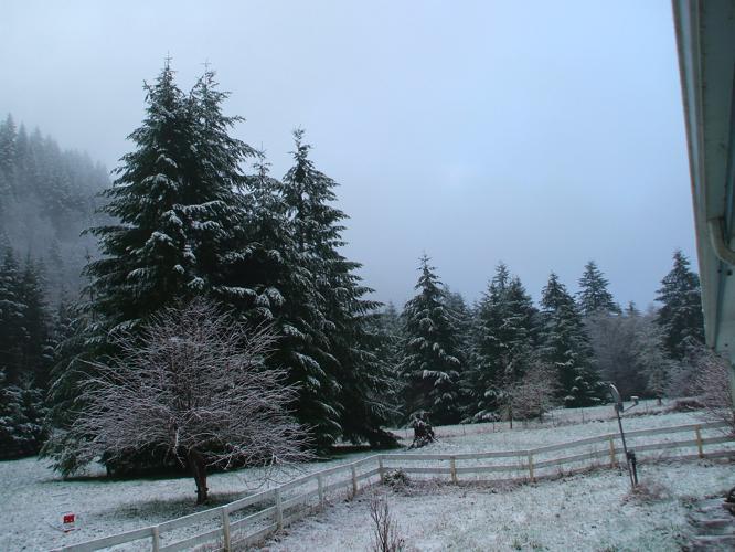 th_初雪3