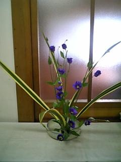 516お花