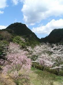 木戸公園2