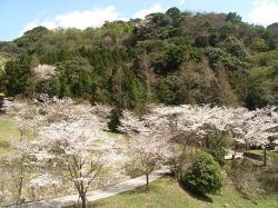 木戸公園4