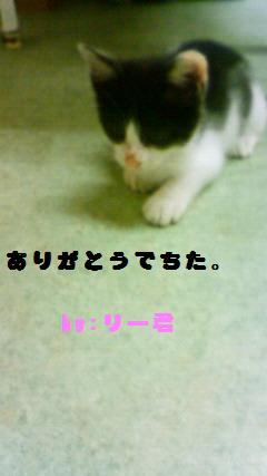 おおじ 003