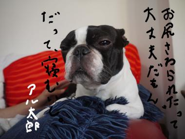 尻_convert_20091029023252