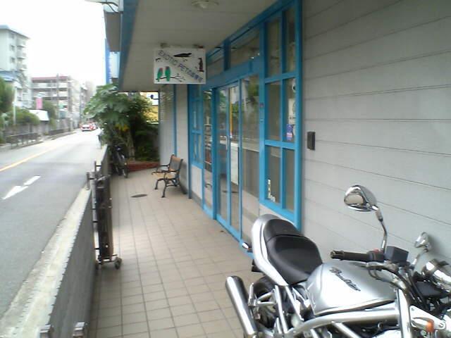 ナイル動物病院