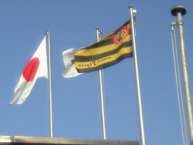 浜風になびく球団旗