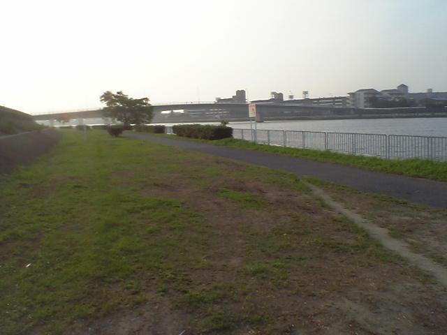 雨の湾岸1
