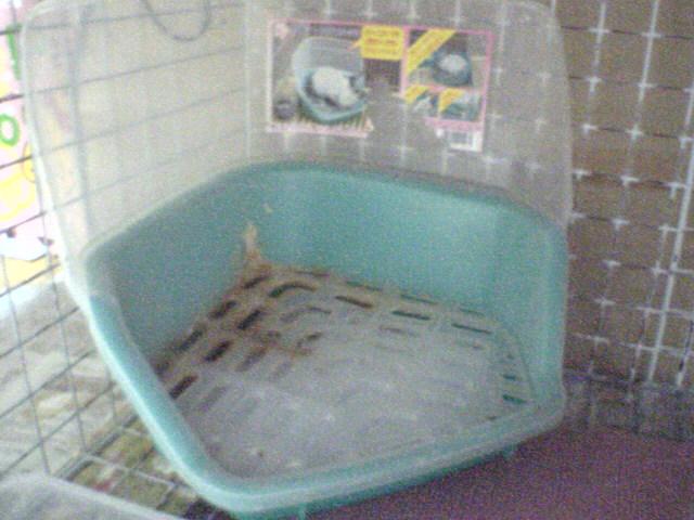 ぴーちさんお気に入りのトイレ