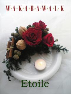 アロマ  プリザーブド クリスマス