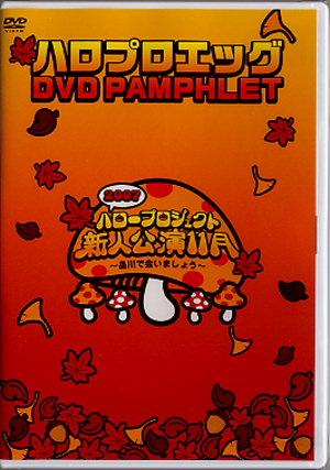 新人公演DVDパンフレット。