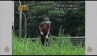 田舎に泊まろう小島可奈子。
