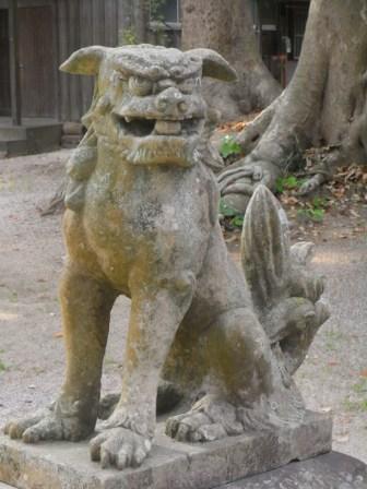 太祖宮若杉1