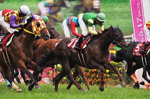 2009京王杯SC