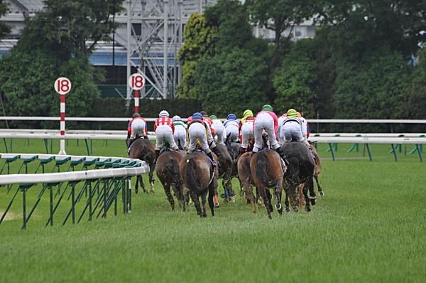 優駿牝馬1コーナー