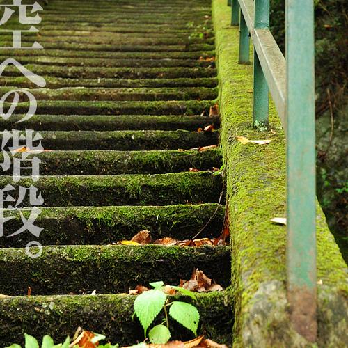 kazu113.jpg