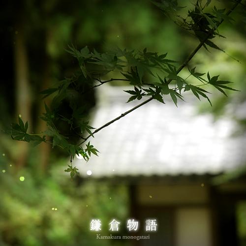 kazu180.jpg