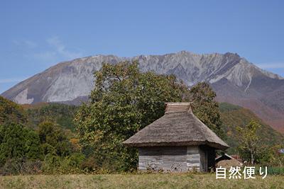 茅葺き屋根と大山