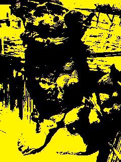 image8538787.jpg