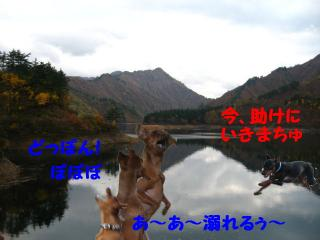 IMG_825311.jpg