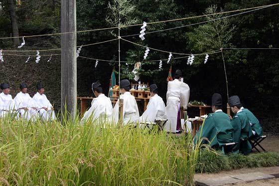 大神神社 抜穂祭1