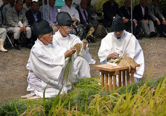 大神神社 抜穂祭3