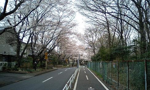 20070331103.jpg