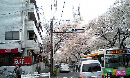 20070331108.jpg
