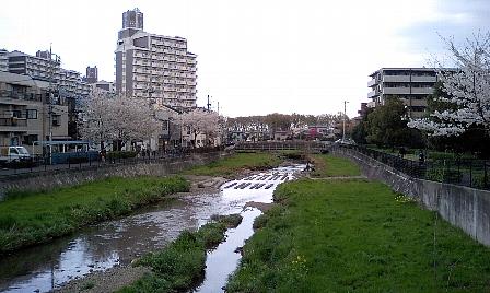 20070405110.jpg