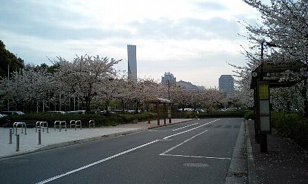 20070407104.jpg