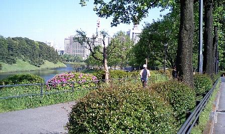 20070430101.jpg