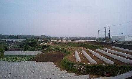 2007050516.jpg