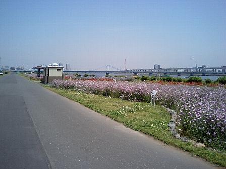 2007051607.jpg