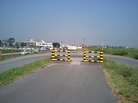 2007081103.jpg