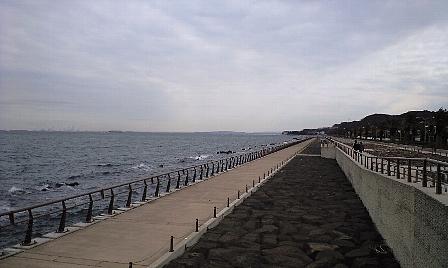2008011410.jpg