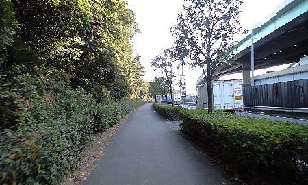 2008012204.jpg