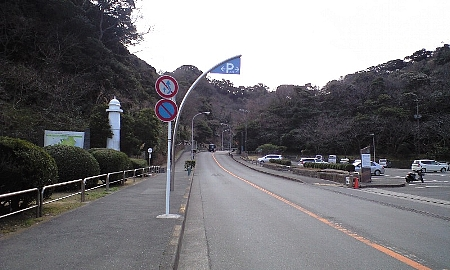 2008013108.jpg