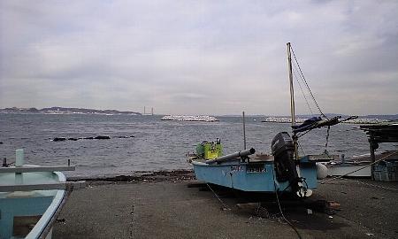 2008013113.jpg
